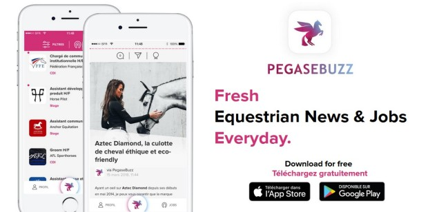 pegasebuzz-app-dressage-perspectives-02